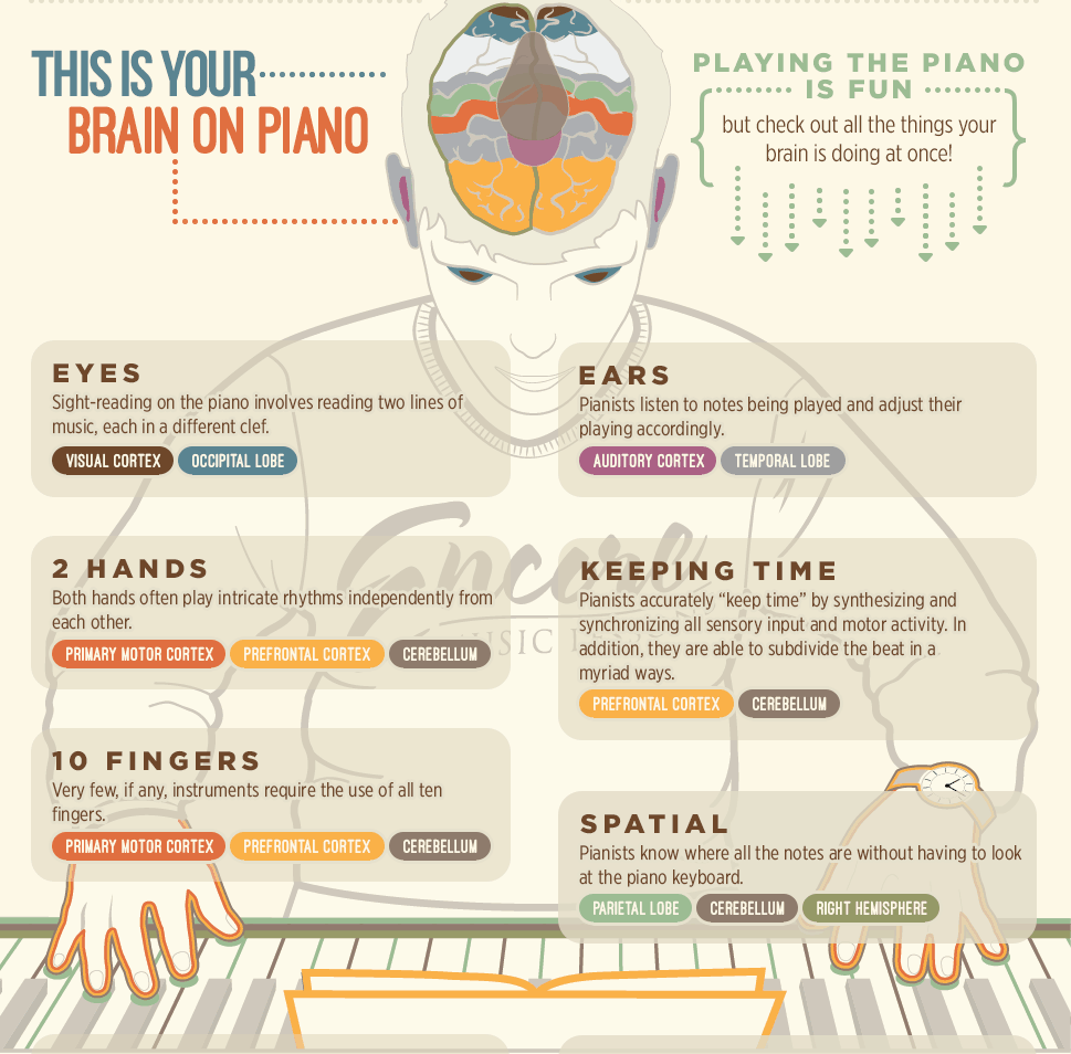 Belajar Piano Infographic CROP